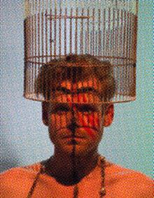 Foto: Mann mit Vogelkäfig über dem Kopf